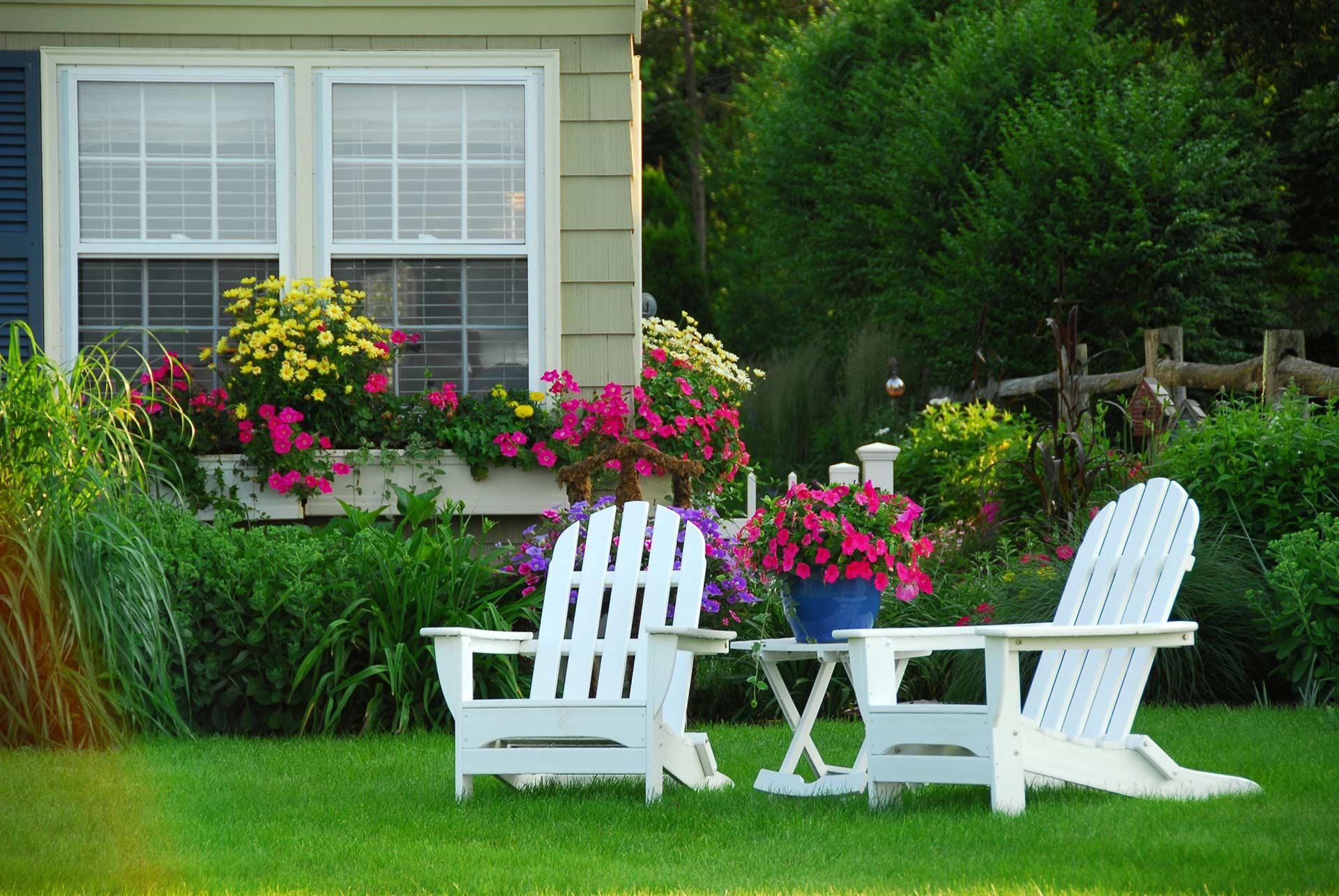 white adirondack chairs in a backyard