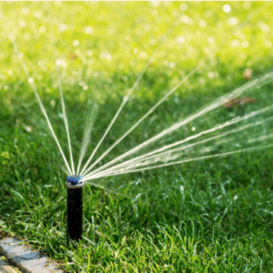 sprinkler head watering a lawn