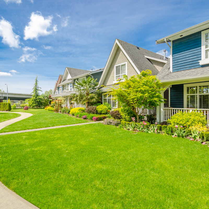 A row of homes with healthy green lawns
