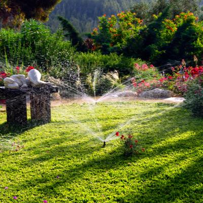 backyard garden with sprinklers