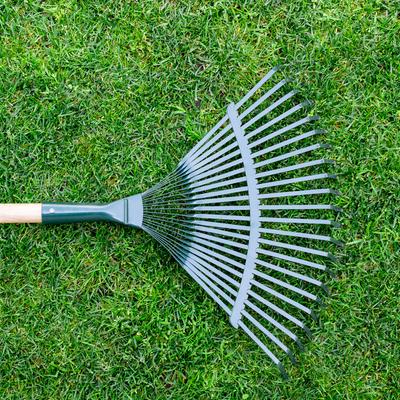 rake on a lawn