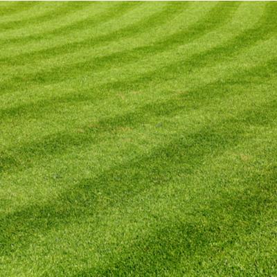 mower cut lines
